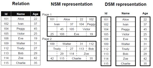 nsm_and_dsm